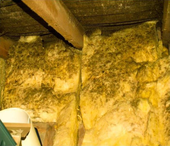 Water Damage Lack Of Insulation Can Lead To Water Damage In Your Louisville Home