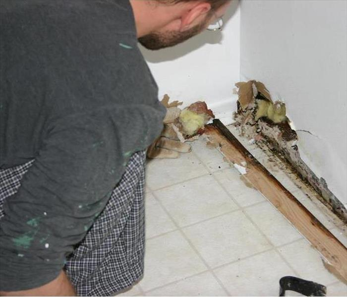 Mold Remediation Mold Damage Ruins Clothing, Carpets, and More when Mold Grows in Boulder Properties