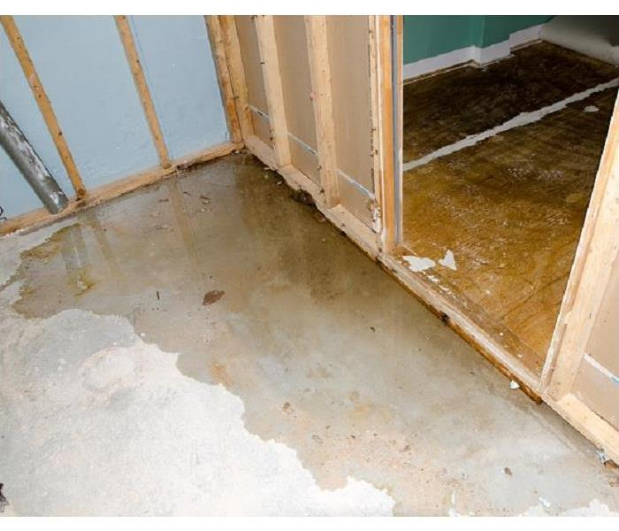 Why SERVPRO How SERVPRO Removes Water From Your Louisville Home