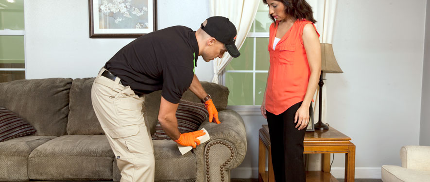 Lafayette, CO carpet upholstery cleaning