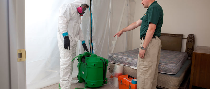Lafayette, CO mold removal process